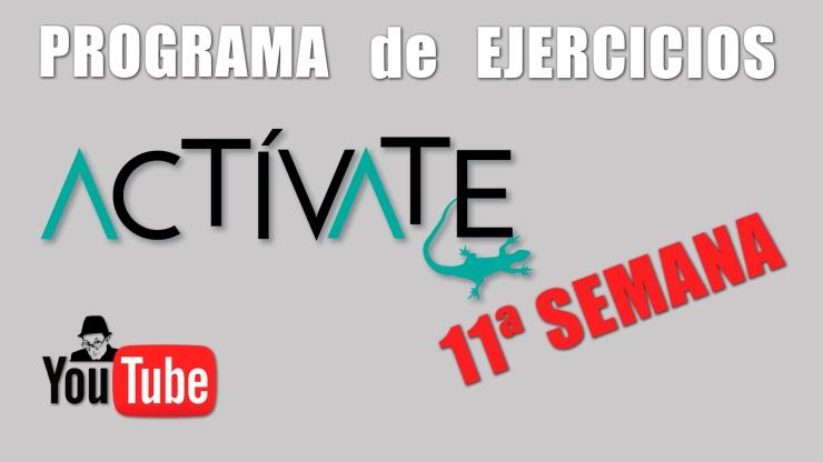 Miniatura ACTIVATE-11