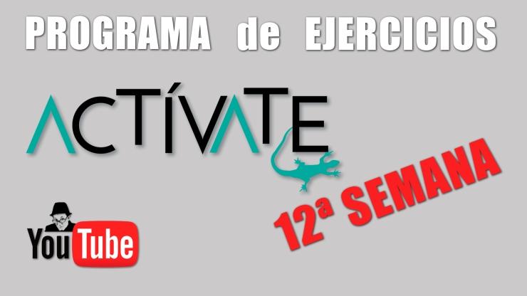 Miniatura ACTIVATE-12